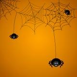 Aranhas Fotos de Stock