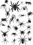 Aranhas ilustração stock