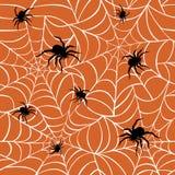 Aranhas em Web Fotografia de Stock Royalty Free