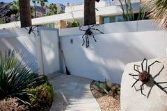 Aranhas na casa Imagens de Stock Royalty Free