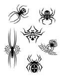 Aranhas pretas do perigo ajustadas Imagens de Stock