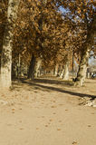 Aranjuez Gardens - Spain Stock Images