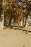 Aranjuez Tuinen Stock Afbeeldingen