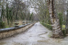 Aranjuez, world heritage, gardens of the island next to the roya. L palace Stock Photos