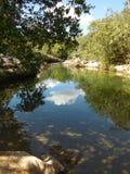 Araraswaterval stock fotografie