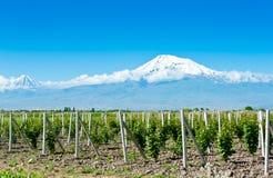 ararat βουνό της Αρμενίας Στοκ φωτογραφία με δικαίωμα ελεύθερης χρήσης