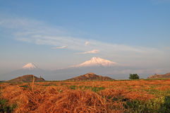 Ararat in Armenia. Big and Little Ararat in a field near the monastery of Khor Virap in Armenia Stock Photography
