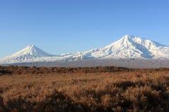 Ararat in de ochtend Royalty-vrije Stock Fotografie