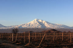 Ararat dietro terreno arabile Fotografia Stock
