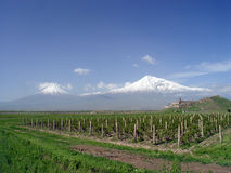 Ararat Mountain, Armenia. Holy Ararat Mountain in Armenia Stock Photo