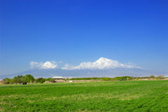 Ararat mountain. Armenia , Ararat valley Royalty Free Stock Image