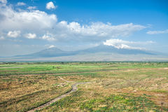 Ararat mountain and field Royalty Free Stock Image