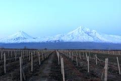 Ararat at night. The mount Ararat at night in winter, Armenia Royalty Free Stock Photos