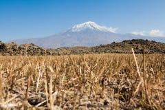 Ararat in Turkey. Ararat in East Turkey. See my other works in portfolio Stock Photo