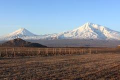 Ararat valley at daybreak. In winter, Armenia Royalty Free Stock Image