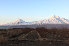 Ararat valley at sunrise Stock Photography