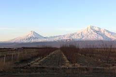 Ararat valley at sunrise. In winter, Armenia Stock Photography