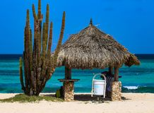 Arashi Beach Aruba Beach Hut and Cactus Plant blue sky terquois ocean. Arashi is a settlement and beach on the northwestern tip of Aruba, in Noord district. It Royalty Free Stock Images