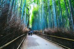 Arashiyama的,京都,日本美丽的竹森林 库存照片
