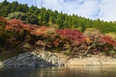 Arashiyama看法在秋天期间的京都 库存照片