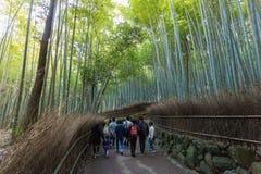 Arashiyama竹子森林 免版税库存照片