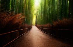 Arashiyama竹树丛在日本 免版税库存照片
