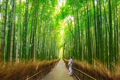 Arashiyama竹森林在京都,日本附近的 免版税库存照片