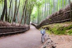 Arashiyama竹道路,日本 免版税库存图片