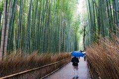 Arashiyama μια βροχερή ημέρα Στοκ φωτογραφία με δικαίωμα ελεύθερης χρήσης