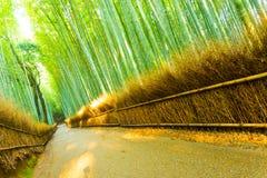 Arashiyama μπαμπού δρόμων που γέρνουν φράκτης χλόης δασικών Στοκ Εικόνα