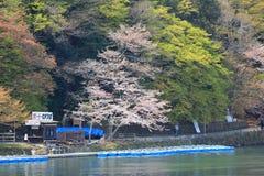 Arashiyama στο Κιότο, Ιαπωνία Στοκ Φωτογραφία