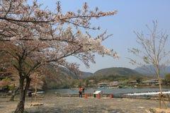 Arashiyama την άνοιξη Στοκ Εικόνες