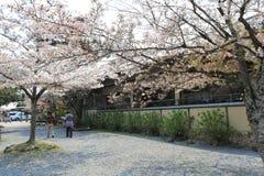 Arashiyama την άνοιξη Στοκ εικόνα με δικαίωμα ελεύθερης χρήσης