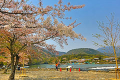 Arashiyama την άνοιξη Στοκ εικόνες με δικαίωμα ελεύθερης χρήσης