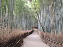 Arashiyama Lizenzfreie Stockfotos
