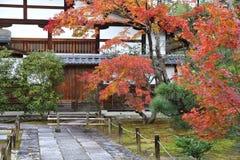 Arashiyama in autumn. Kyoto, Japan - Tenryuji Temple in Arashiyama. Autumn leaves Stock Photo
