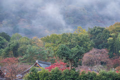 Arashiyama in Autumn. Nature view of Arashiyama in Autumn ,Kyoto, Japan Stock Image