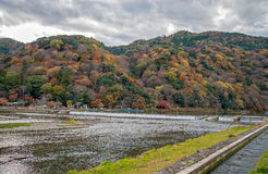 Arashiyama in autumn season. Royalty Free Stock Photo