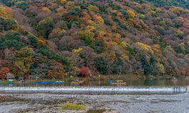 Arashiyama in autumn season. Royalty Free Stock Images