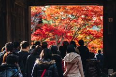 Arashiyama is Autumn season late november and colorful Leaf such. Arashiyama is a district on the western outskirts of Kyoto, Japan. It also refers to the Stock Images