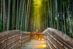 Arashiyama Bamboo Forest Stock Photography