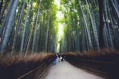 Arashiyama. Bamboo forest at arashiyama, Kyoto Japan, Vintage colour tone Stock Photos