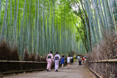 Arashiyama Bamboo Forest. People walk around Kyoto`s Arashiyama Bamboo Forest. This particular forest is one of Kyoto`s most popular attractions. It`s been said Stock Images