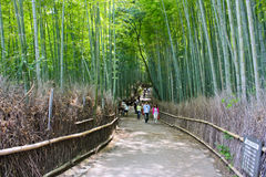 Arashiyama Bamboo Forest. People walk around Kyoto`s Arashiyama Bamboo Forest. This particular forest is one of Kyoto`s most popular attractions. It`s been said Royalty Free Stock Photo