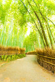 Arashiyama Bamboo Forest Twisting Road Nobody V. Bending, twisting footpath road lined with hay fence and soaring bamboo trees at early morning in Arashiyama Royalty Free Stock Photos