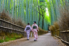 Arashiyama Bamboo Forest. Two women in traditional kimono walk through Kyoto`s Arashiyama Bamboo Forest. This particular Bamboo forest is one of Kyoto`s most Stock Image