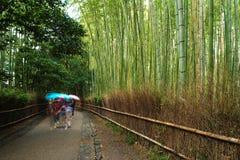 Arashiyama Bamboo Grove. Schoolgirls with umbrellas walk the famous path at the Arashiyama Bamboo Grove in Kyoto, Japan Royalty Free Stock Photos