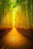Arashiyama bamboo Kyoto stock photos