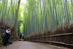 Arashiyama bambusa las Zdjęcie Stock