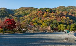 Arashiyama in beautiful autumn season colours. Arashiyama in beautiful autumn season colours, Kyoto, Japan.n Royalty Free Stock Photography